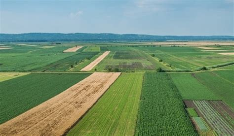 Germany to Invest in Iranian Agriculture