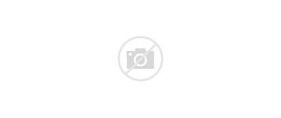 Crossing Animal Elephants Ultrawide Ultra African Road