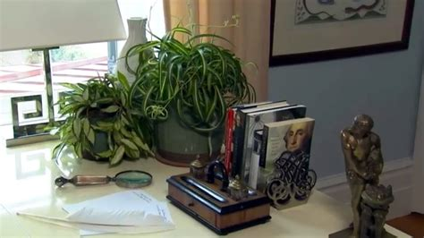 air purification house plants at home with p allen