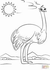 Ostrich Coloring Letter Pages Cartoon Printable Preschool Crafts Supercoloring Alphabet Drawing Worksheets Ocean Letters Puzzle Printables Animals Abc Dot Categories sketch template