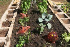 Tomatenblätter Rollen Sich Ein : hochbeet aus ytong steinen darauf sollten sie achten ~ Lizthompson.info Haus und Dekorationen