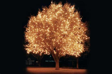 christmas light decorating services aatb inc