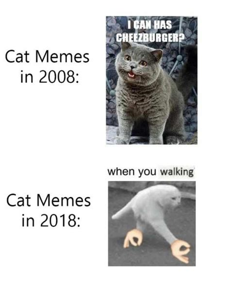 Tumblr Memes 2018 - cat memes in 2008 vs cat memes in 2018 meme xyz