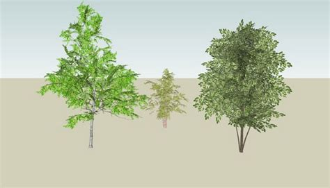 sketchup components 3d warehouse 3d trees