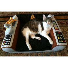 Trek Captains Chair Pet Bed by 1000 Images About Cats Wif Trek Or Trek Cats