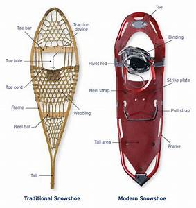Snowshoes A Traditional Companion For Wintertime Travel In