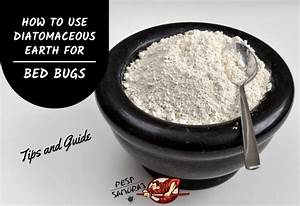 How To Use Diatomaceous Earth For Bed Bugs  Tips And Guide