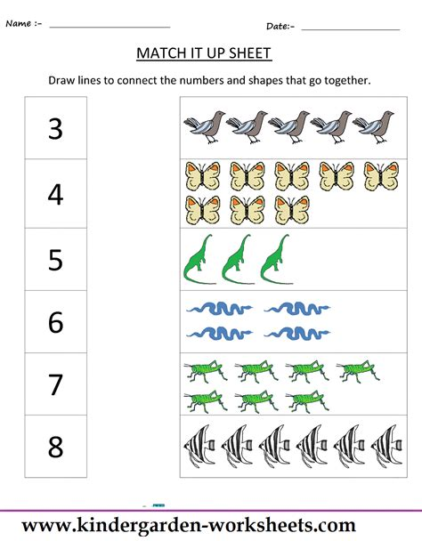 Kindergarten Worksheets Maths Worksheets  Matching Worksheets