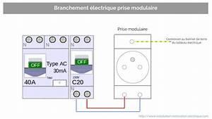 Branchement D Une Prise : prise modulaire la prise 2p t du tableau lectrique et de ~ Dailycaller-alerts.com Idées de Décoration