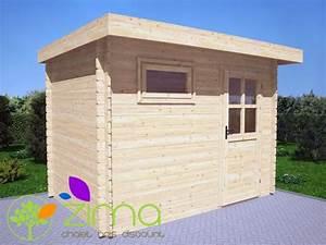 Abris De Jardin Discount : abris en bois massif modern toit plat ~ Melissatoandfro.com Idées de Décoration