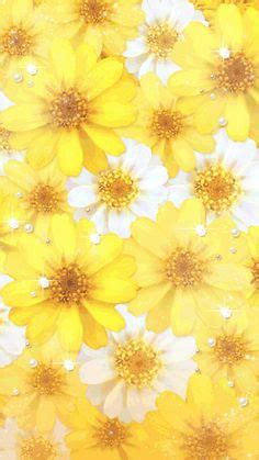 shades  yellow flower background images