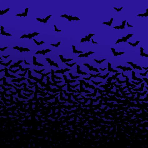 Iphone Wallpaper Bats by Holidays Black Bats Iphone Hd Wallpaper