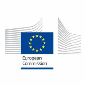 DG EMPL – Consultation on future EU policy framework on ...
