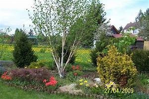Gartengestaltung Unter Bäumen : meine vorstellungen vom garten meine gartengestaltung ~ Yasmunasinghe.com Haus und Dekorationen