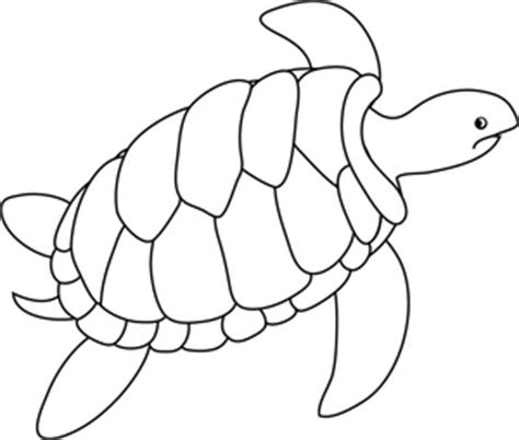 turtle clipart black and white turtle clip free free vector for free about
