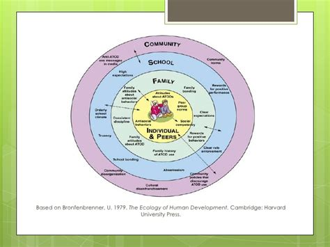 Bronfenbrenner Theory Essay by Bronfenbrenners Ecological Theory What Is Bronfenbrenner