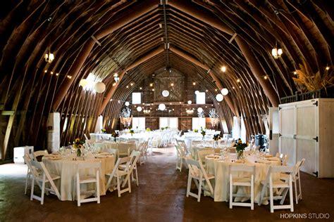 blue dress barn wedding rose nicholas hopkins studio