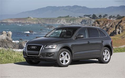 best audi q5 2010 audi q5 widescreen car photo 11 of 20