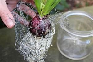 Frühlingsdeko Im Glas : fr hlingsdeko mit blumen im glas einfach selber machen ~ Orissabook.com Haus und Dekorationen