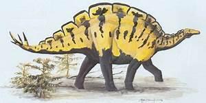 Wuerhosaurus | HowStuffWorks