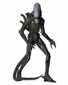 Alien 1/4 Scale Action Figure 1979 Alien NECAOnline com