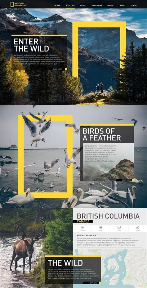 love     national geographic yellow graphic