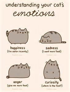 cat emotions pusheen cat emotions silly stuff
