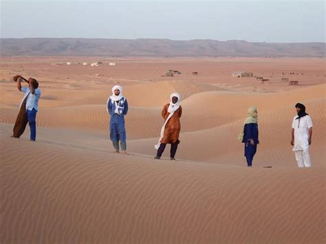 ¡vive La Música En Nuestros Circuitos En El Desierto