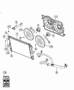 2014 Dodge Avenger Hose  Radiator Outlet  Related
