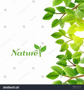 The gallery for --> Poster Background Design Nature