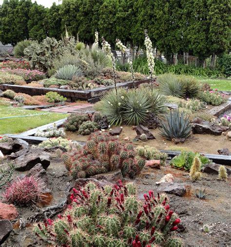Desert Botanical Garden - danger garden hillside desert botanical gardens