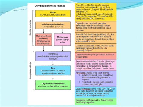 B 10 12_dzivibas_izcelsanas_evolucija