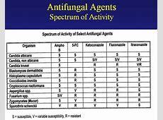 augmentin generic
