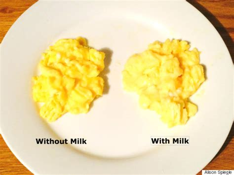 what to do with eggs why adding milk to your scrambled eggs is a mistake huffpost