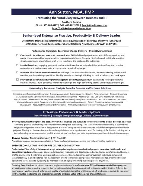 Exles Of Ses Resumes by 2014 Executive Resume Sles Memes
