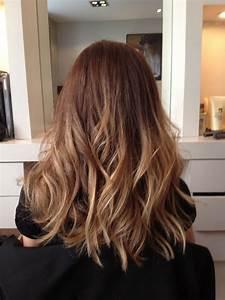 Meches Blondes Sur Chatain : coiffure balayage miel ~ Melissatoandfro.com Idées de Décoration