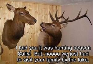 17 Best Funny H... Elk Animal Quotes