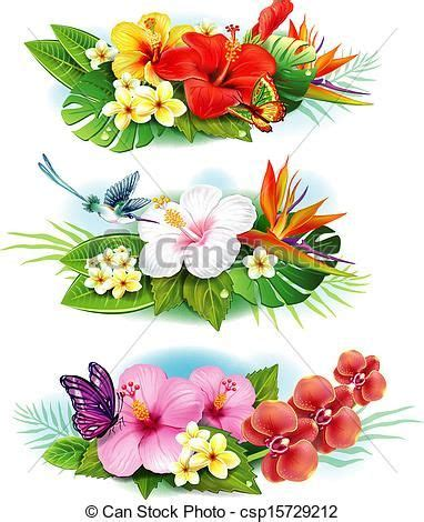 undefined  beauty  flowers fleurs tropicales