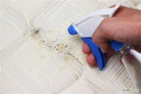 how do you get bed bugs bed bugs what kind of pests they are and how to get rid