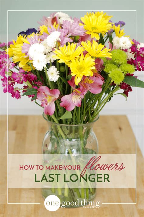 Make Cut Flowers Last Longer by How To Make Your Fresh Cut Flowers Last Longer One