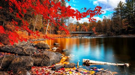 Desktop Autumn Wallpaper by Autumn Wallpaper For Desktop 61 Pictures