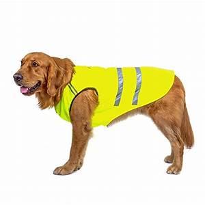 Regenmantel Für Hunde Mit Bauchschutz : hunde zubeh r von bwiv online kaufen bei futter und ~ Frokenaadalensverden.com Haus und Dekorationen