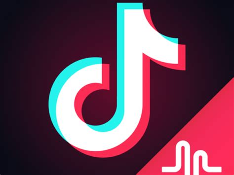 tik tok including musical ly apps for windows phone 10 8