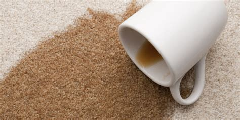 how to get coffee out of carpet how to get coffee stain out of carpet coffee stain removal