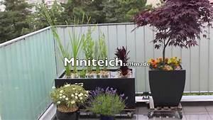 miniteich beispiel zum selber machen youtube With französischer balkon mit teich im garten