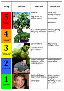 5 Point Anger Scale