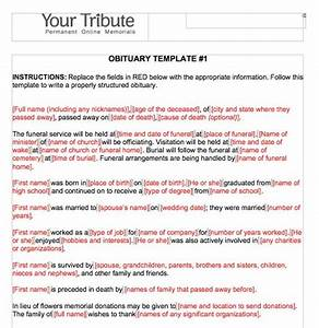 eulogy format idealvistalistco With fake obituary template