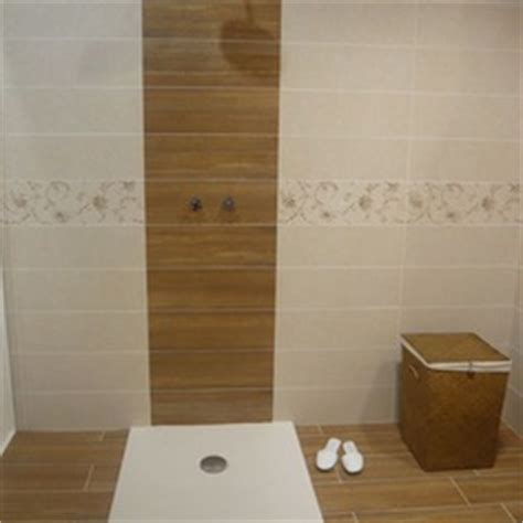 vertical accent stripe in tile shower for the home