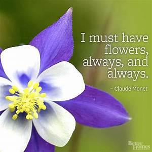 Daisy Flower Quotes. QuotesGram