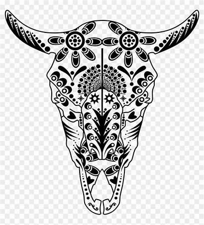 Sugar Getdrawings Skull Drawing Transparent Animal Colouring